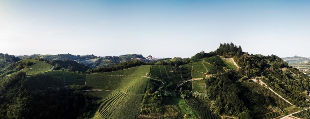 valmaggiore-sandrone-vinifera